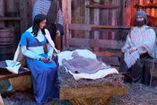 Nativity Scene at Krohn Conservatory