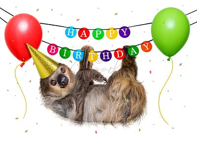 Funny Sloth Hanging From Happy Birthday Banner