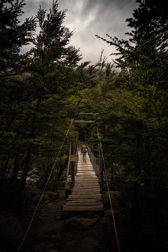 Hiker crosses wooden bridge on forest trail, Torres del Paine National Park, Last Hope Province, Magallanes Region, Chile, So...