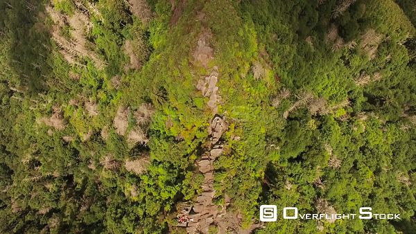 Tennessee USA  Flying vertical shot over Chimney Tops summit.