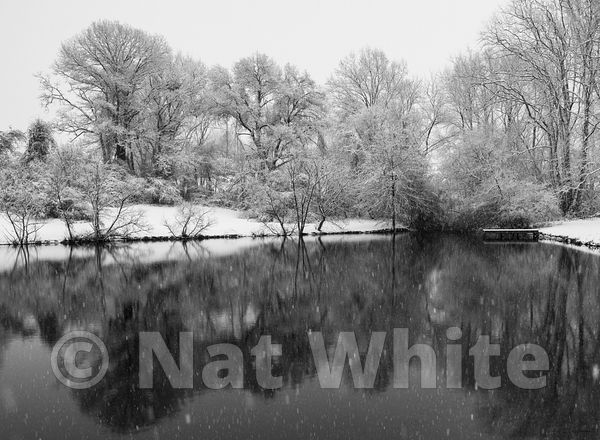 Pond_reflections_in_snow-January_07_2020_