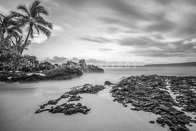 Secret Cove Wedding Beach Maui Black and White Photo