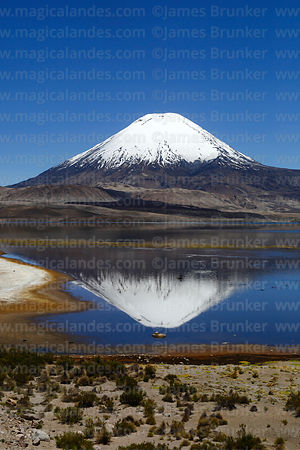 Parinacota volcano reflected in Lake Chungará, Lauca National Park, Region XV, Chile