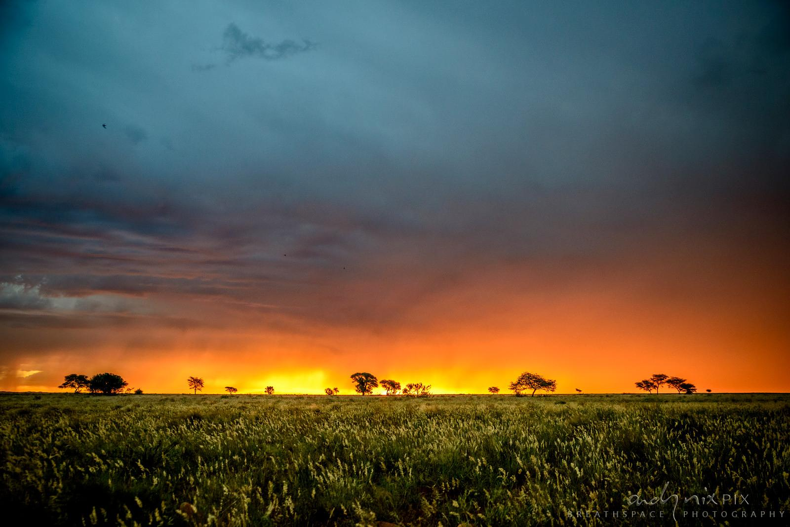 Sunset thunderstorm over open veld landscape