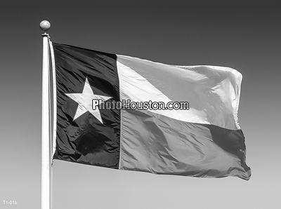 Black and white Texas flag
